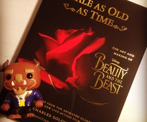 beauty and the beast, book, and happy image
