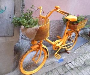 yellow, bike, and vintage image