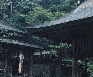 japan, nature, and rain image