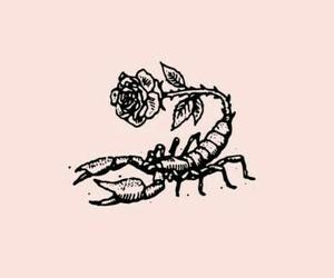 tattoo, rose, and scorpio image