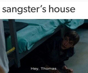 lol, me, and thomas sangster image