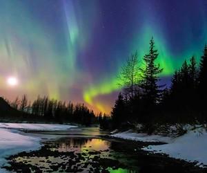beautiful, nature, and alaska image