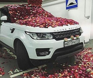 beautiful, car, and flowers image