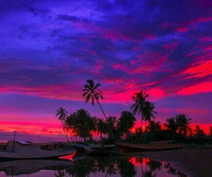 beauty, nature, and pink image