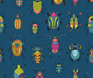 background, bugs, and insects image