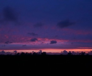 night, pink, and purple image