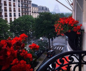 city, flowers, and paris image