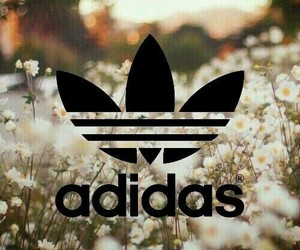 adidas, tumblr, and Logo image