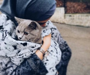 cat, hijab, and we heart it image