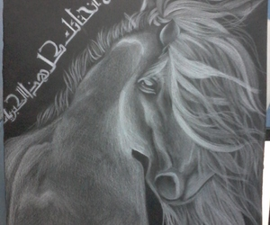 black and white, horse, and drawing image