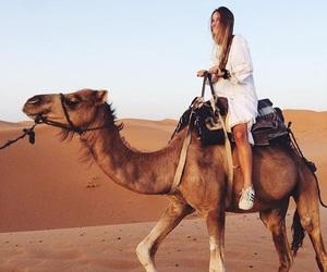 camel, desert, and girl image