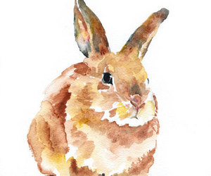 art, bunny, and painting image