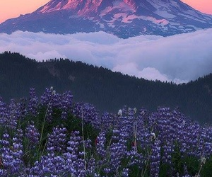 nature, mountain, and wallpaper image