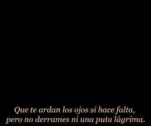 frases, love, and cry image