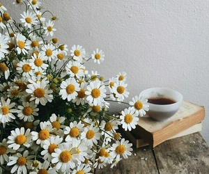 flowers, books, and tea image