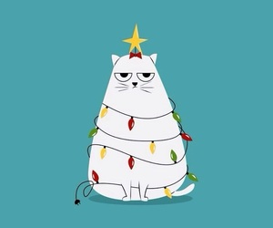 background, cat, and christmas image