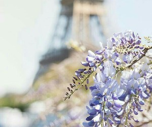 france, paris, and spring image
