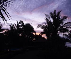 aesthetic, sunset, and grunge image