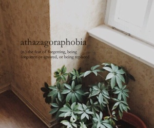 aesthetic, definitions, and natural image