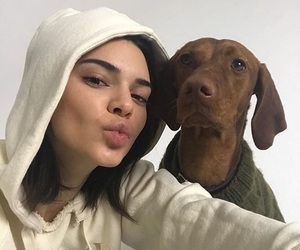 kendall jenner, dog, and model image