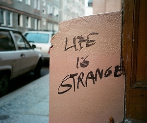 quotes, life, and grunge image