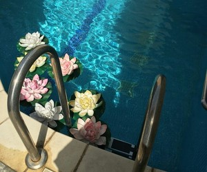 flowers, pool, and aesthetic image