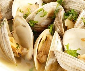 clams, food, and recipes image