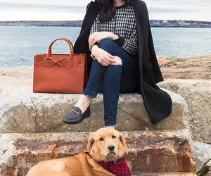 blogger, dog, and fashion image