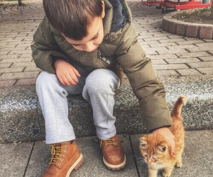 cat, kids, and cute image