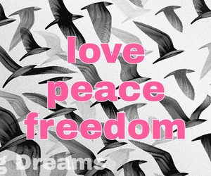 freedom, quote, and love image