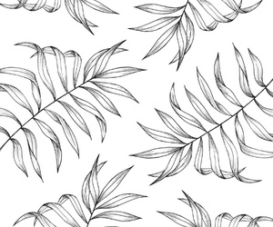 black and white, design, and leaf image