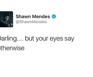 Hot, quotes, and shawn mendes image