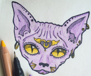 cat, ink, and purple image