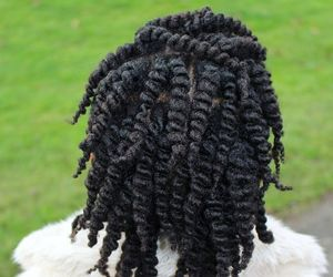natural hair, twist, and afro hair image
