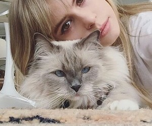 cat, girl, and carlson young image