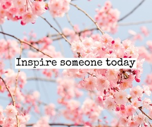 quotes, inspiration, and inspire image