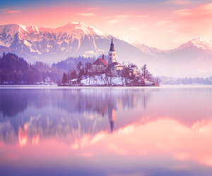 pink, nature, and castle image