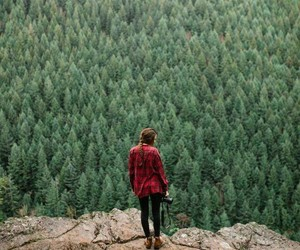alone, lonelly, and forest image