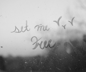 black and white, free, and text image