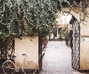 bicycle, green, and Krakow image