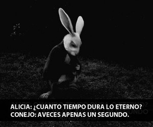 alice, frases, and quotes image