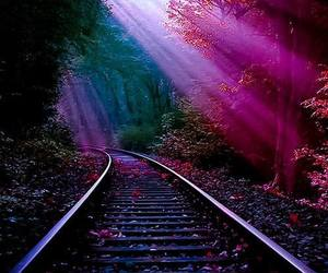 nature and train image