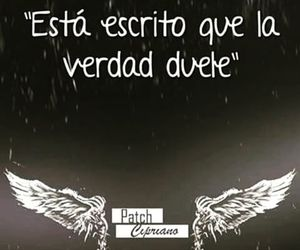 hush hush, patch cipriano, and frases image