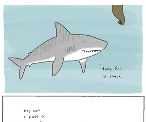 funny, shark, and cute image