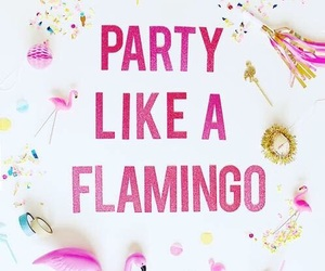 flamingo and party image