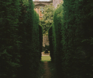 garden and green image