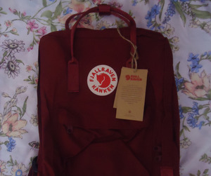 aesthetic, fjallraven kanken, and red image
