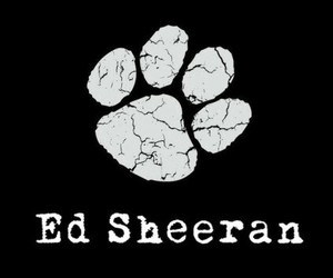 ed, sheeran, and music image
