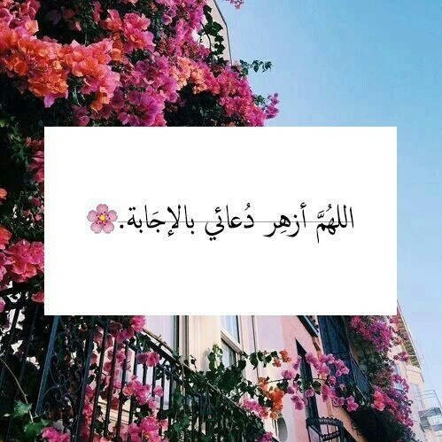 اذكار الصباح والمساء Ahkaarr Twitter
