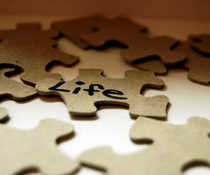 life and puzzle image